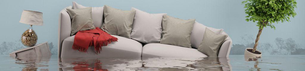 wasserschaden sitron sanierung. Black Bedroom Furniture Sets. Home Design Ideas